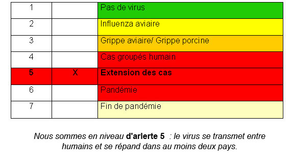 tableau situation grippe A H1N1 en France